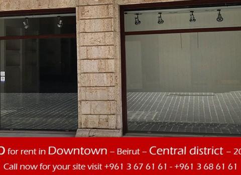 Downtown - Central District Shop $40,000